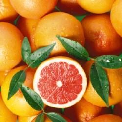 Классическая грейпфрутовая диета