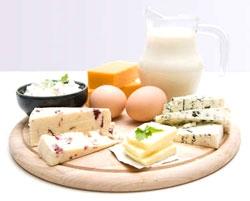 Высокопротеиновая диета