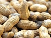 Полезные свойства арахиса, его вред