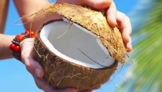 Полезные свойства кокоса
