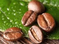 Полезные свойства кофе, его вред