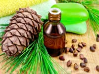 Кедровое масло для похудения