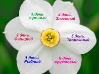 Рецепты для диеты 6 лепестков