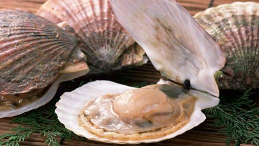 Полезные свойства морского гребешка